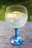 Outdoors Gin tonic Royalty Free Stock Photo