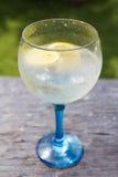 Outdoors Gin tonic Royalty Free Stock Photo