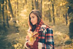 Outdoors lifestyle fashion portrait of pretty young woman walking on the autumn park. Outdoor atmospheric fashion photo. Of young beautiful lady in autumn royalty free stock photo