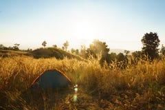 outdoors obozuje traw średniogórza halni w zmierzchu Obrazy Royalty Free