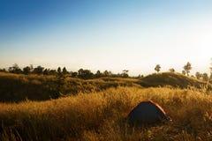 outdoors obozuje traw średniogórza halni w zmierzchu Obrazy Stock