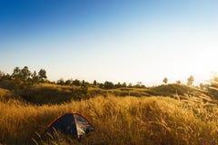 outdoors obozuje traw średniogórza halni w zmierzchu Zdjęcia Royalty Free