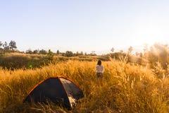 outdoors obozuje traw średniogórza halni w zmierzchu Zdjęcie Stock