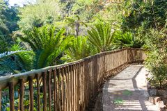 Outdoors Park Walking Path Wood Fence. Walking path with wood pole fencing decor outdoor nature plants trees bird park landscape Royalty Free Stock Images