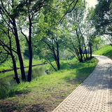 Outdoors path along a river. Running route. Stock Image