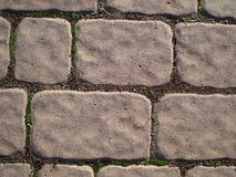 Pavement. Outdoors pavement in a park Royalty Free Stock Photography