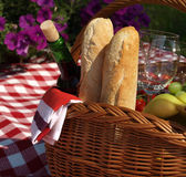 Outdoors picnic Royalty Free Stock Photos