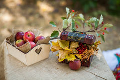 Outdoors picnic close up Royalty Free Stock Photography