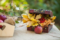 Outdoors picnic close up Stock Photography