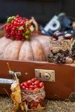 Outdoors picnic close up Stock Photos