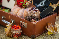 Outdoors picnic close up Royalty Free Stock Images