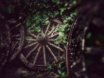 The old wheel cart in garden decoration royalty free stock images