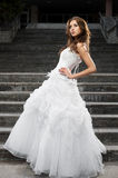 Beautiful young woman in wedding dress Royalty Free Stock Photo