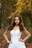 Beautiful young woman in wedding dress Royalty Free Stock Photography