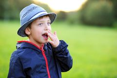 Outdoors portrait of surprised boy Stock Image