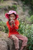 Outdoors portrait of vietnamese little girl holding plant and smiling at camera. Beautiful soft sunlight. New generation. Dien royalty free stock images