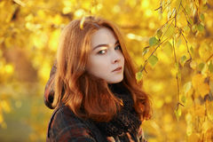 Outdoors portrait of young beautiful redhead woman in scarf and jacket on yellow autumn foliage background Stock Photo