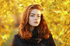 Outdoors portrait of young beautiful redhead woman in scarf and jacket on yellow autumn foliage background Royalty Free Stock Photography