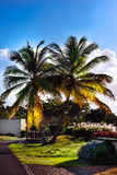 Outdoors walkway in sunny tropical nature of Tobago Caribbean Stock Photo