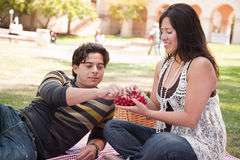 Outdoorsy Hispanic Couple Having a Picnic in the Park Royalty Free Stock Photos