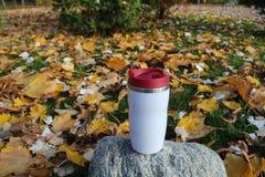 Outdor de tasse de voyage dans des feuilles jaunes Photos libres de droits