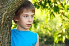 Outdore de la naturaleza del árbol forestal del tacto del muchacho Foto de archivo libre de regalías