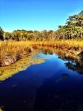 Outer banks North Carolina Royalty Free Stock Photo