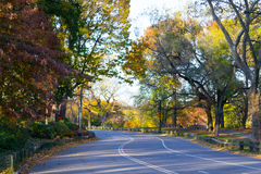 Outer park drive during an colorful autumn afternoon Stock Image
