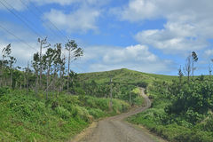 Outer Road in inner forest area of Ovalau island, Fiji Stock Photography
