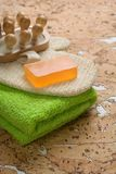 Outfit for bathing on cork wood Royalty Free Stock Photos