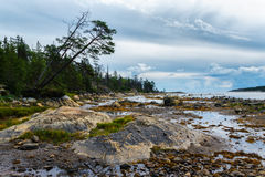 Outflow at coast of the White sea Royalty Free Stock Photos