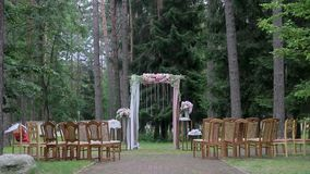 Exit wedding registration on the background of the forest stock footage