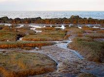Rough coast of Holland stock photos
