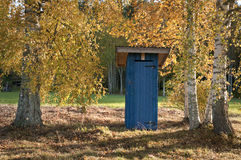 Outhouse. Between birches with yellow leaves in the autumn Royalty Free Stock Photography