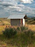Outhouse del Wildflower Immagini Stock Libere da Diritti