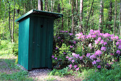 Outhouse in the forest. Green outhouse in the rhododendron garden royalty free stock photos