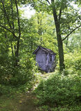 Outhouse in forest Stock Image