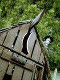 Outhouse fra i pini fotografia stock libera da diritti