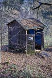 Outhouse, toilet in the forest in the autumn season. Stock Photos