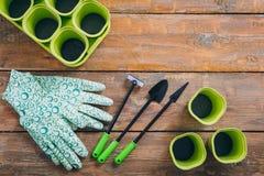 Outil de jardin pour des jeunes plantes sur le fond en bois brun photos stock