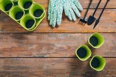 Outil de jardin pour des jeunes plantes sur le fond en bois brun photo libre de droits