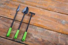 Outil de jardin pour des jeunes plantes sur le fond en bois brun images libres de droits