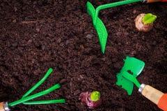 Outil de jardinage d'isolement et espace de copie Images stock