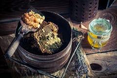 Outils antiques pour l'apiculture Photographie stock