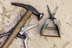 Outils, ciseaux et marteau Photographie stock
