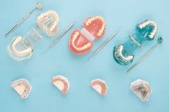 Outils de dentiste et orthodontique Photographie stock libre de droits