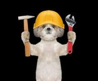 Outils de fixation mignons de constructeur de chien dans des ses pattes photographie stock