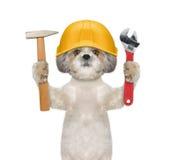 Outils de fixation mignons de constructeur de chien dans des ses pattes images stock