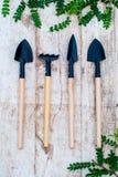 Outils de jardin pour des plantes d'intérieur Fleurs de couperet et d'un ornamental de râteau Photos libres de droits