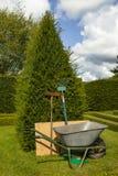 Outils de jardin se penchant tout droit contre un arbre d'if photos stock